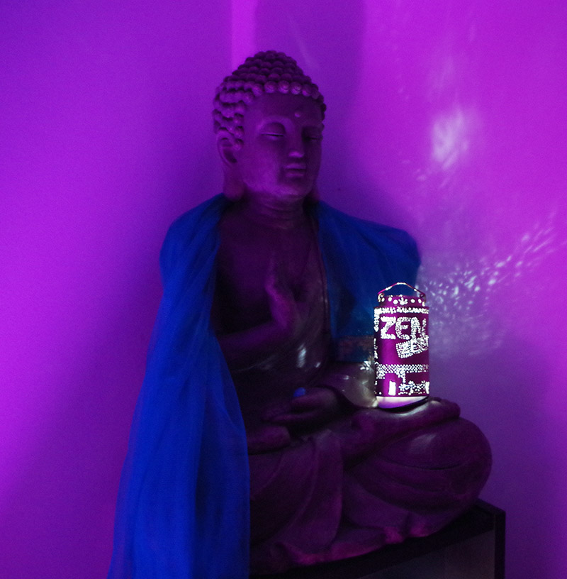 zen zest moving nantes